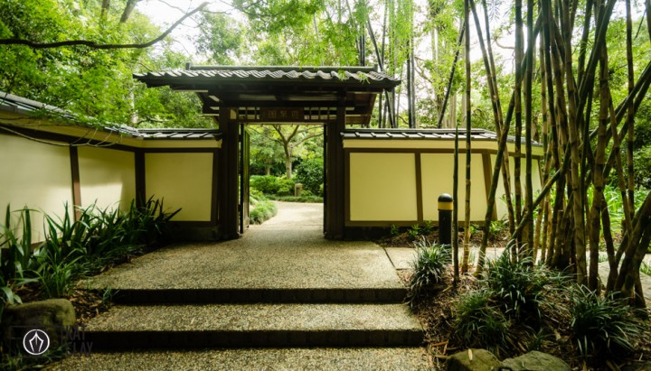 Brisbane botanic gardens japanese garden