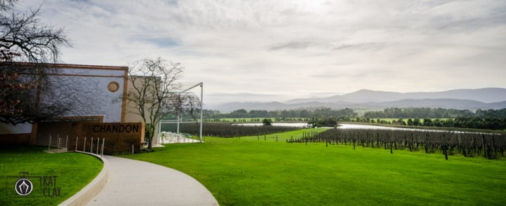 Chandon Winery Yarra Valley