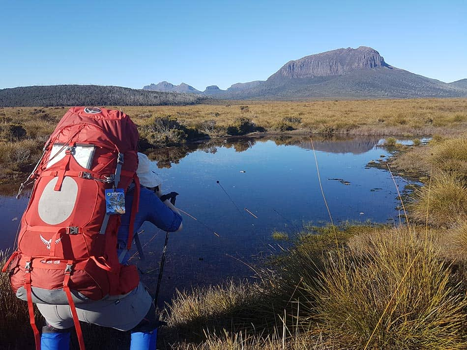 Photographing the Overland Track
